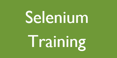 Selenium Training